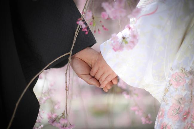結婚写真 桜ロケ 諏訪市
