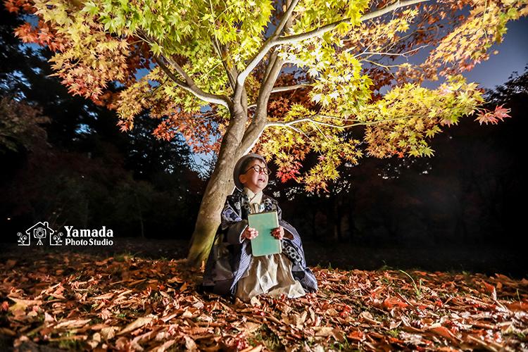 ストロボ大きな紅葉の木下で本と眼鏡と着物と僕