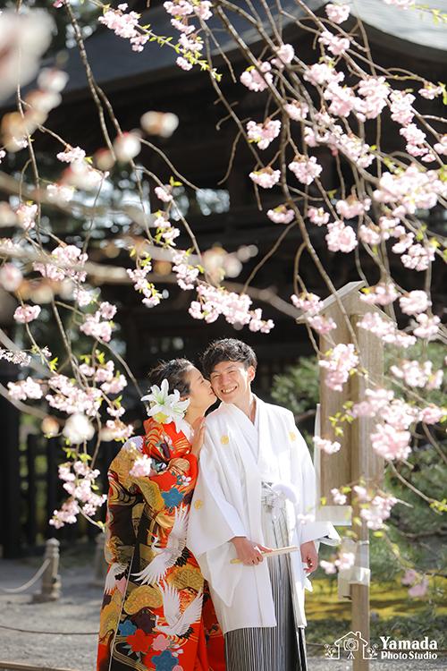 桜慈雲寺結婚式前撮りほっぺにチュー