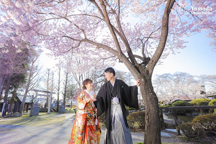 桜 諏訪 前撮り
