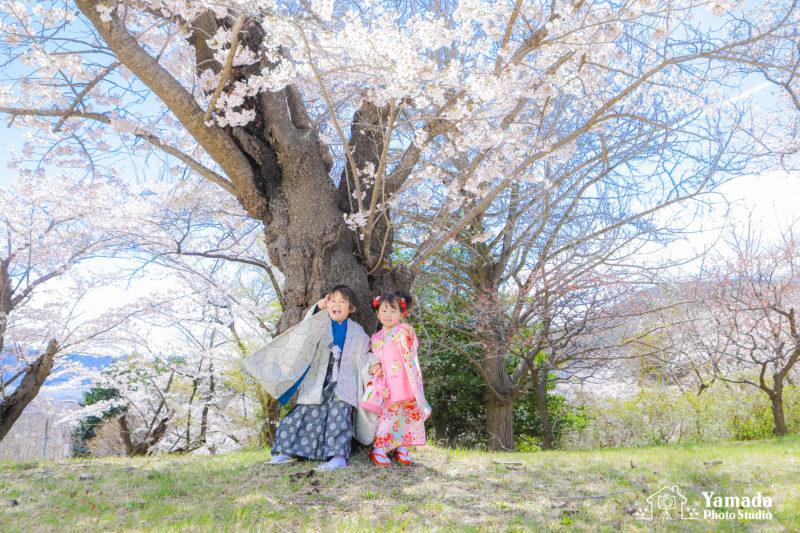 兄妹753桜ロケーションフォト岡谷市