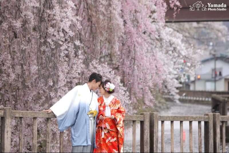 高島城桜ロケ