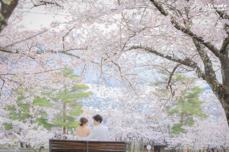 城山公園桜フォト
