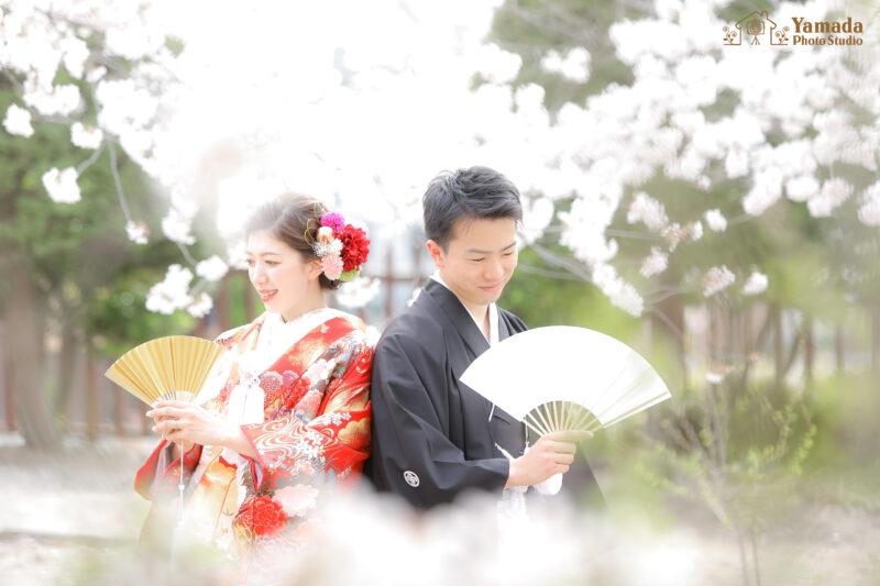 松本城桜ロケ