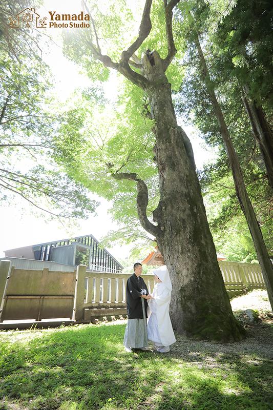 諏訪大社上社結婚式
